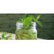 Mocktail Kiwi Citron vert