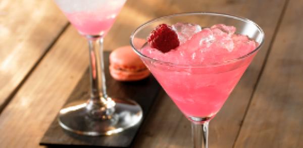 Cocktail Pink Mum