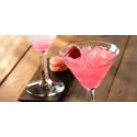 Cocktail Pink Mum'